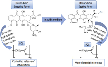 Effects of polymer chemistry, concentration, and pH on doxorubicin