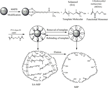 Noble surface molecularly imprinted polymer modified