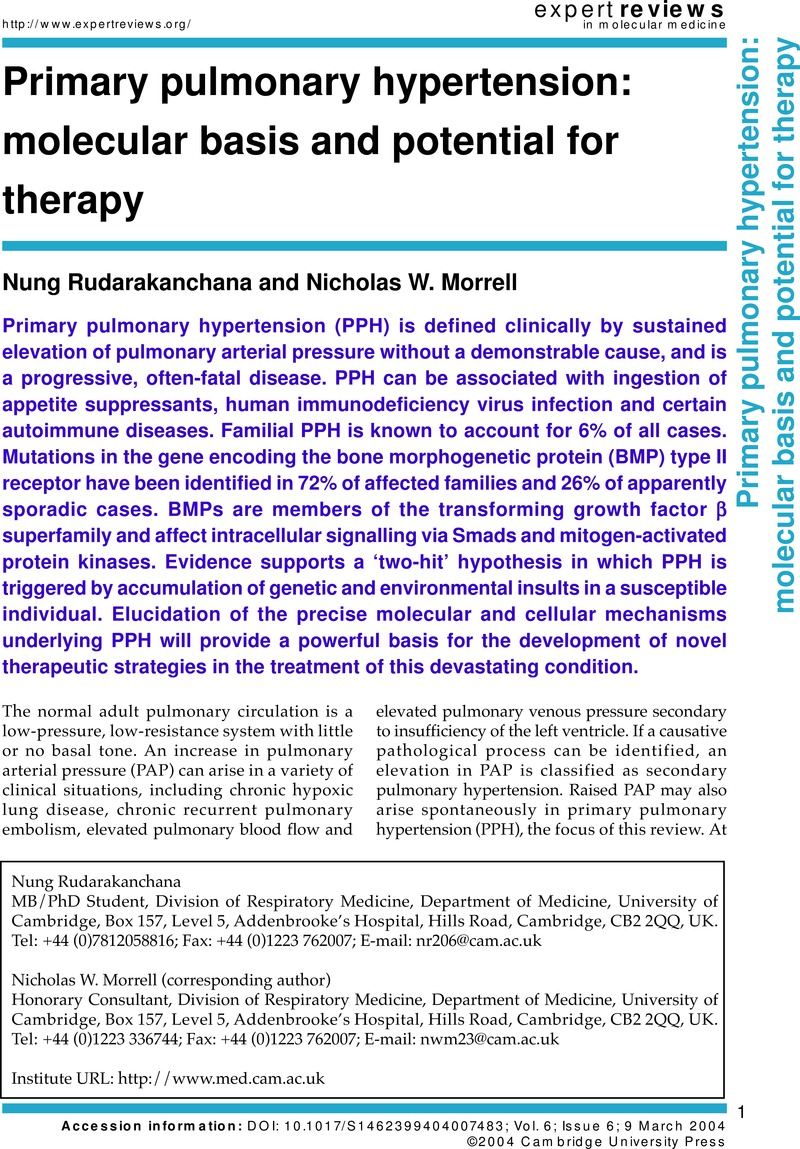 Primary pulmonary hypertension: molecular basis and