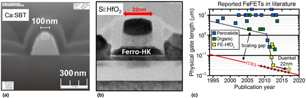 Review and perspective on ferroelectric HfO2-based thin