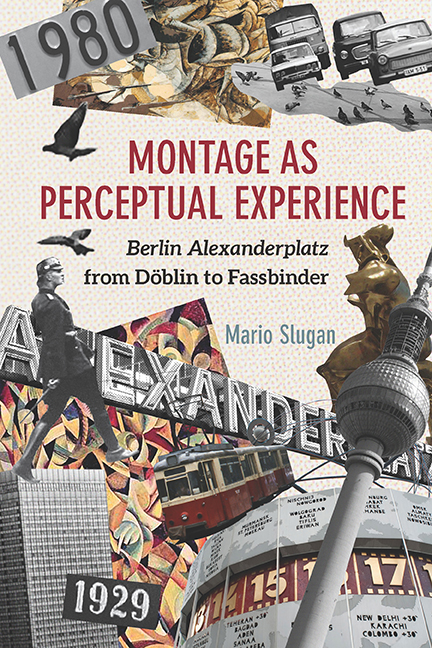 Montage as Perceptual Experience