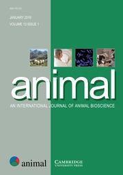 animal Volume 13 - Issue 1 -