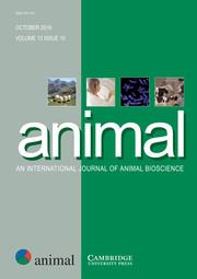 animal Volume 13 - Issue 10 -