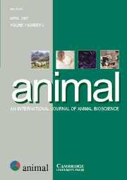 animal Volume 1 - Issue 3 -