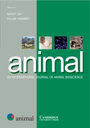 animal Volume 1 - Issue 7 -