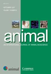 animal Volume 1 - Issue 8 -
