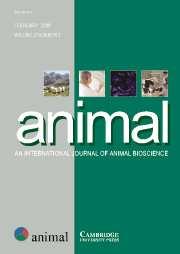animal Volume 2 - Issue 2 -