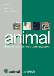 animal Volume 2 - Issue 3 -