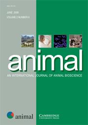 animal Volume 2 - Issue 6 -