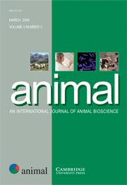 animal Volume 3 - Issue 3 -
