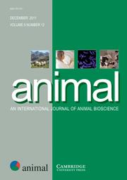 animal Volume 5 - Issue 12 -