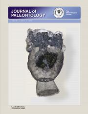 Journal of Paleontology Volume 89 - Issue 4 -