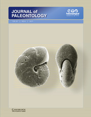 Journal of Paleontology Volume 91 - Issue 6 -