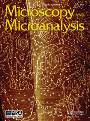 Microscopy and Microanalysis Volume 19 - Issue 3 -