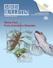 MRS Bulletin Volume 32 - Issue 6 -  Sticky Feet: From Animals to Materials