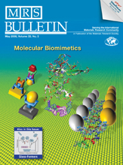 MRS Bulletin Volume 33 - Issue 5 -  Molecular Biomimetics