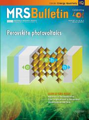 MRS Bulletin Volume 40 - Issue 8 -  Perovskite Photovoltaics