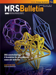 MRS Bulletin Volume 42 - Issue 12 -  DNA Nanotechnology: A foundation for Programmable Nanoscale Materials