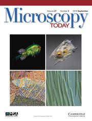 Microscopy Today Volume 27 - Issue 5 -
