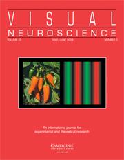 Visual Neuroscience Volume 25 - Issue 3 -