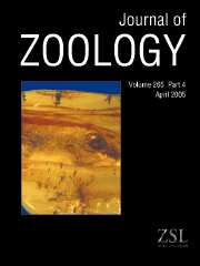 Journal of Zoology Volume 265 - Issue 4 -