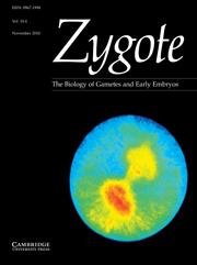 Zygote Volume 18 - Issue 4 -